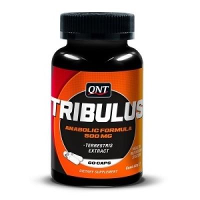 QNT - Tribulus - 60 caps Protein Outelt